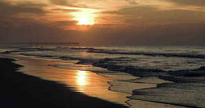 Photograph - Coastal Carolina by Karen Wiles