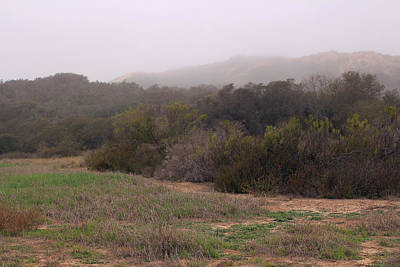 Photograph - Coastal Chaparral With Ocean Mist by Robin Street-Morris