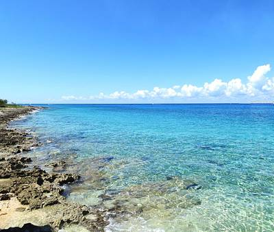 Photograph - Coastal Cozumel Mexico by Tim Townsend