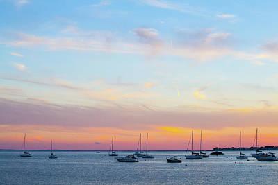 Photograph - Coastal Daze by Karol Livote