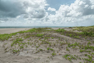Photograph - Coastal Dunescape by John M Bailey