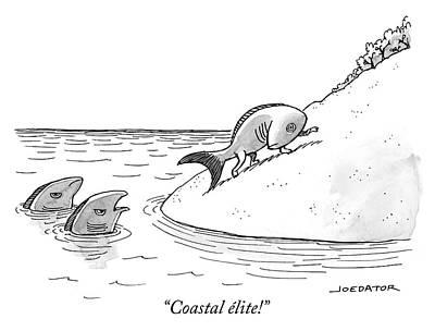 Drawing - Coastal Elite by Joe Dator