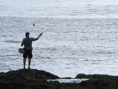 Photograph - Coastal Fishing by Bill Tomsa