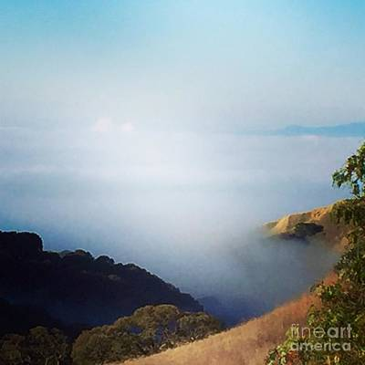 Photograph - Coastal Fog by Suzanne Lorenz