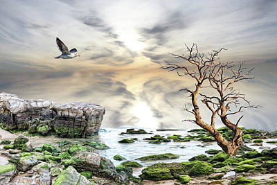 Coastal Landscape  Art Print by Angel Jesus De la Fuente