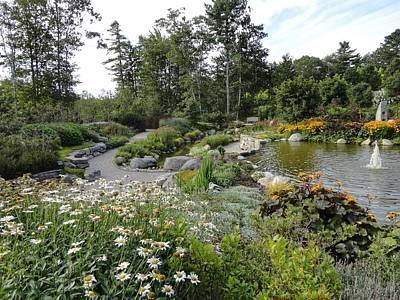 Painting - Coastal Maine Botanical Garden by Anne Sands