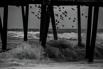 Coastal Movements Art Print