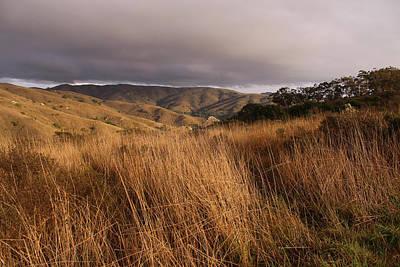 Photograph - Coastal Prairie  by Robin Street-Morris