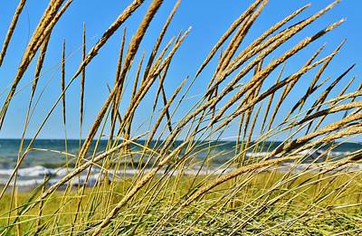 Photograph - Coastal Relaxation by Nicole Lewis