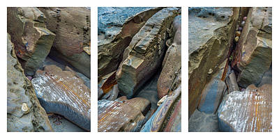 Photograph - Coastal Rocks Collage by Alexander Kunz