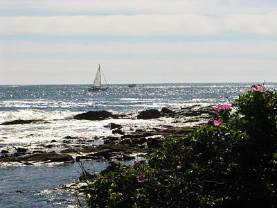 Photograph - Coastal Sailing by Bill Tomsa