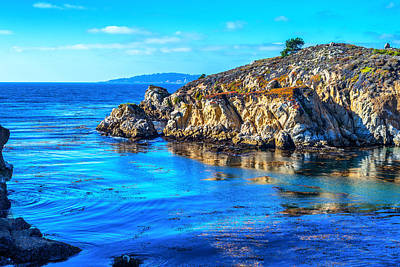 Point Lobos Photograph - Lobos In Color by Joseph S Giacalone