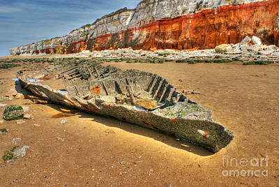 Photograph - Coastal Skeleton by David Birchall