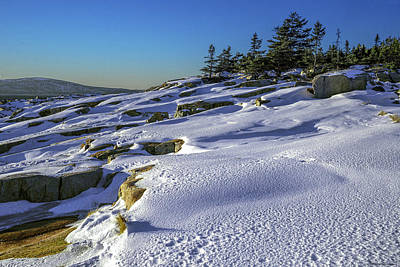Photograph - Coastal Snowscape At Schoodic Point by Marty Saccone