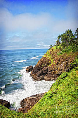Photograph - Coastal View From North Head by Lincoln Rogers