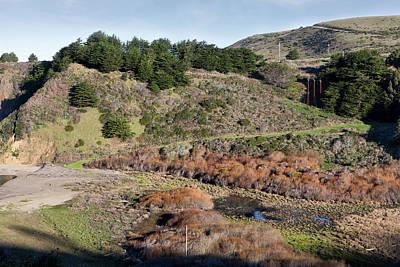 Photograph - Coastal Wetland On Elk Creek  by Kathleen Bishop