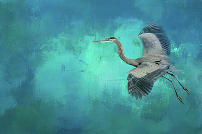 Photograph - Coasting Blue Heron Bird Art by Jai Johnson