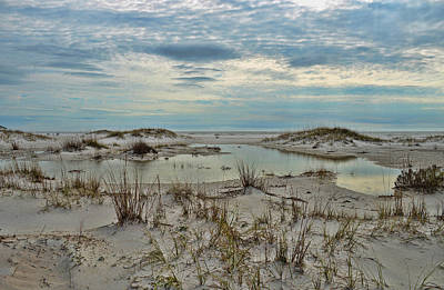 Photograph - Coastland Wetland by Renee Hardison