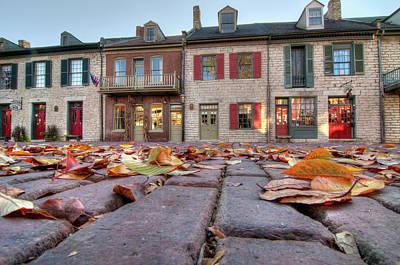 Photograph - Cobblestone And Leaves by Steve Stuller