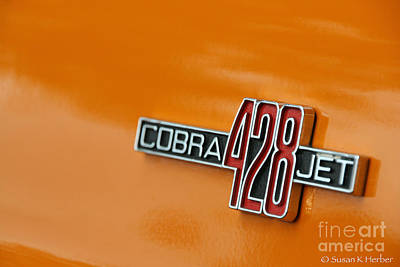 Photograph - Cobra Jet by Susan Herber