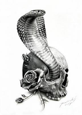 Cobra Art Print by Miro Gradinscak