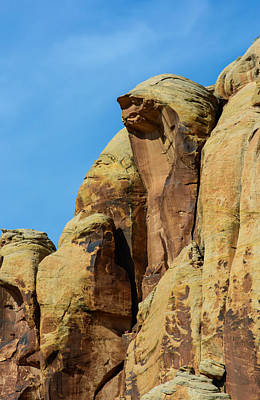 Photograph - Cobra Rock by Tikvah's Hope