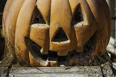 Cobweb Pumpkin Art Print by Garry Gay