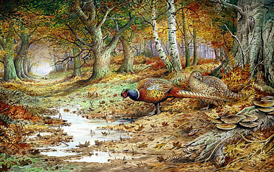The Hen Painting - Cock Pheasant And Sulphur Tuft Fungi by Carl Donner