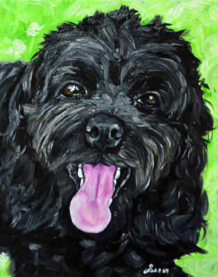 Cockapoo Painting Art Print by Sun Sohovich