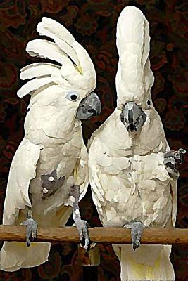 Digital Art - Cockatoo Conversation by Raven Hannah