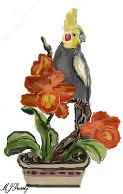 Cockatoo Art Print by June Pressly