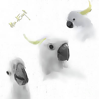 Cockatoo Mixed Media - Cockatoos by Maria Astedt