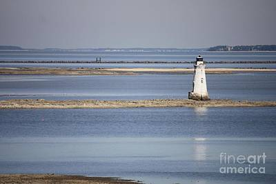 Photograph - Cockspur Island Lighthouse With Jetty by Carol Groenen