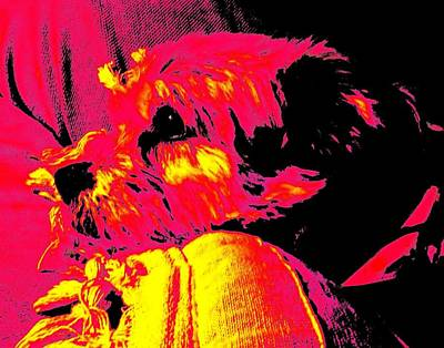 Digital Art - Cocoa Thinking About Her Bone by Vickie G Buccini