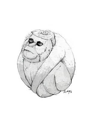 Cute Monkey Drawing - Cocomonkey by Sundeep