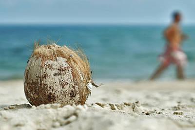 Photograph - Coconut Beach by Lee Webb