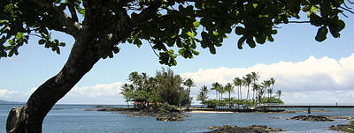 Photograph - Coconut Island Hawaii by Chuck Snyder