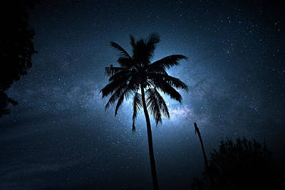 Photograph - Coconut Milky Way  by Mark Andrew Thomas