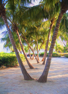 Photograph - Coconut Palms Inn Beachfront by Ginger Wakem