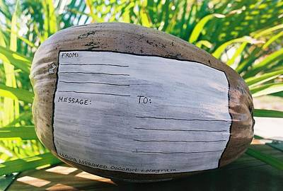 Mixed Media - Coconut Telegram by Nancy Taylor