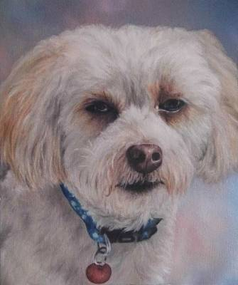 Painting - Cody by Cherise Foster