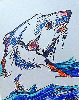 Drawing - Cody's Critters - Mr. Polar Bear by George Frayne
