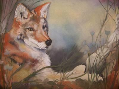 Pastel - Cody by Marika Evanson