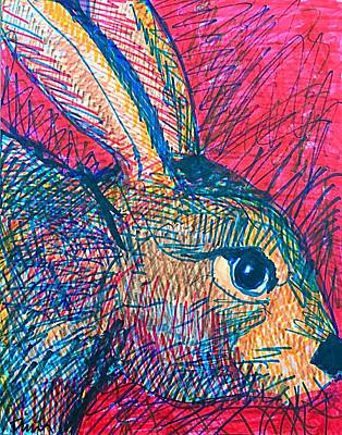 Drawing - Cody's Critters - Backyard Bunny by George Frayne