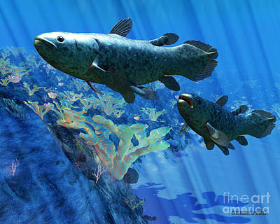Coelacanth Fish Art Print by Corey Ford