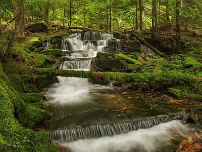 Photograph - Coeur D' Alene National Forest Waterfall by Leland D Howard
