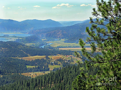 Photograph - Coeur D'alene River Valley Id by Cindy Murphy - NightVisions
