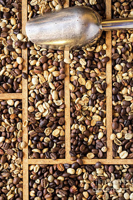Photograph - Coffee Beans 02 by Rick Piper Photography