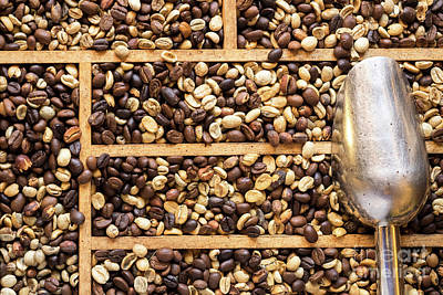 Photograph - Coffee Beans 03 by Rick Piper Photography
