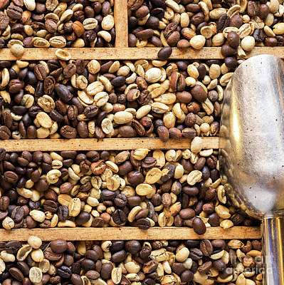Photograph - Coffee Beans 05 by Rick Piper Photography